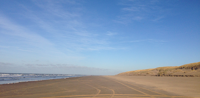 EP-4-strand-paal-12-texel-den-hoorn