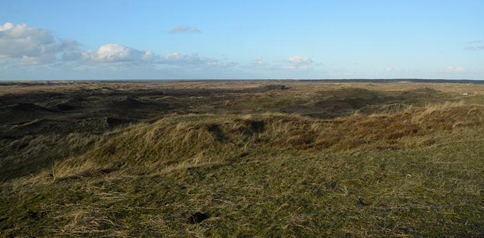Uitzicht-Loodsmansduin-1-texel-den-hoorn