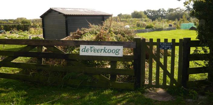 EP-Veerkoog-1-texel-den-hoorn