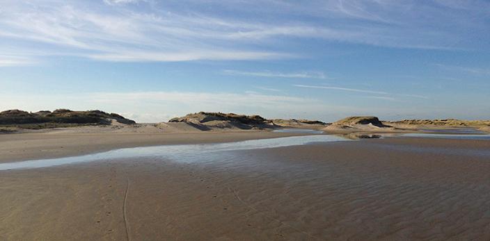 EP-dynamisch-landschap-texel-den-hoorn
