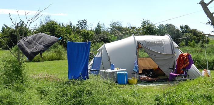 EP-5-camping-hoeve-vrij-en-blij-texel-den-hoorn