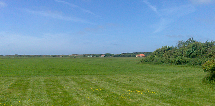 EP-4-wambinghe-texel-den-hoorn