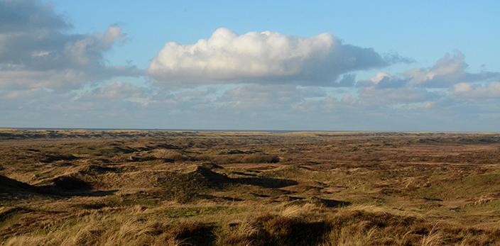 Uitzicht-Loodsmansduin-5-texel-den-hoorn
