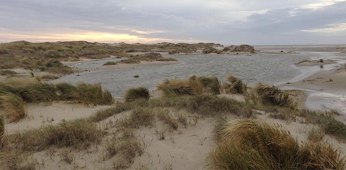 EP-2-dynamisch-landschap-texel-den-hoorn